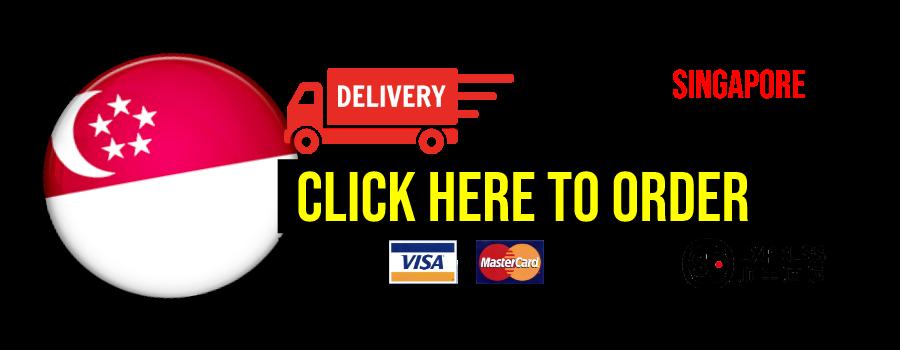 sg en delivery2